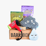 Monthly Bark Box Fun!