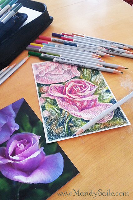 Mandy Saile, drawings, illustrations, roses