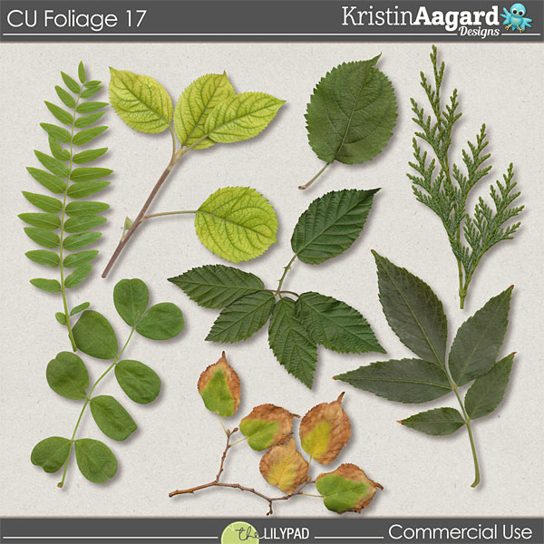 http://the-lilypad.com/store/Digital-Scrapbook-CU-Foliage-17.html