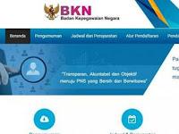 BKN Beri Link Khusus Untuk Cari Informasi soal CPNS 2018