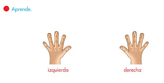 APRENDE DERECHA E IZQUIERDA