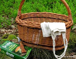 na grzyby, grzybobranie, koszyk na grzyby, w co zbierac grzyby, grzyb