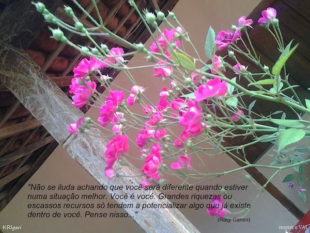Foto particular - KRI: foto tirada em Pratinha
