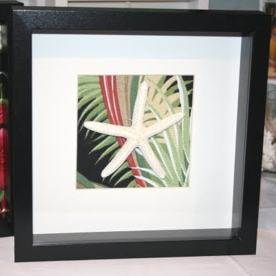 starfish in shadow box