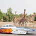Nuon Solar Team onthult 's werelds slimste zonneauto op 'Zuid-Afrikaanse' safari