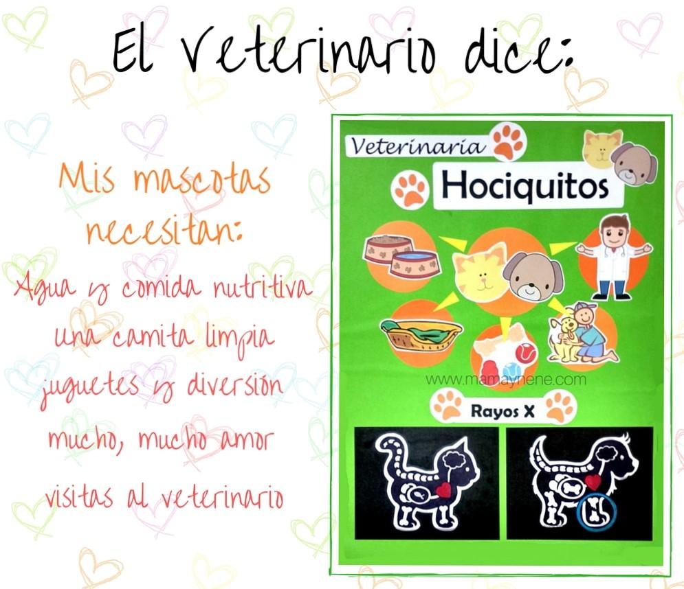 Learning with Teacher Noelia: Proyecto: de mayor quiero ser ...