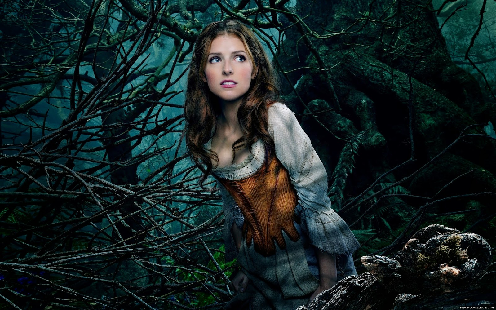 Anna kendrick cinderella hd wallpaper