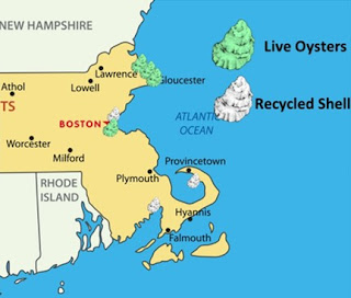 Mass Oyster Project Activity Map