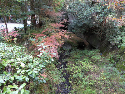 磐船神社 紅葉 天野川