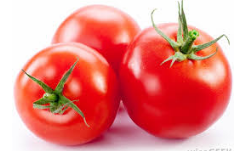 Nutritional contents of tomatoes
