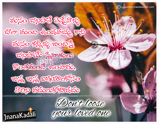 Don\'t loose your loved one quotes in Telugu with hd wallpapers ...