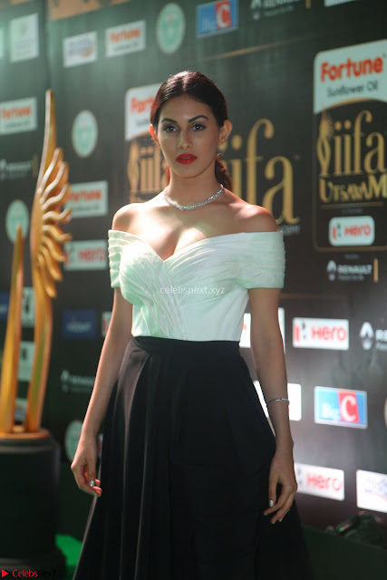 Amyra Dastur in White Deep neck Top and Black Skirt ~  Exclusive 001.JPG