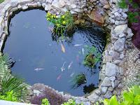 Tips Membuat Kolam Ikan Di Rumah