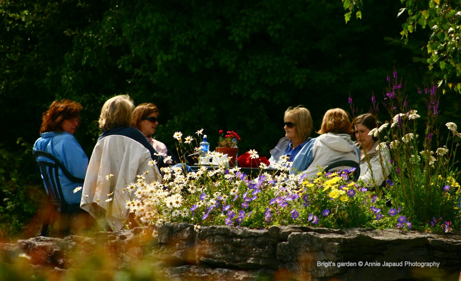 people sitting on the grounds of the garden