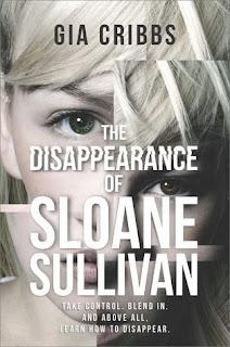 The Disappearance of Sloan Sullivan by Gia Cribbs, Best books summer 2018