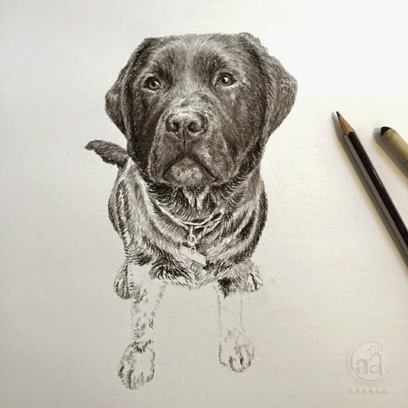 https://www.etsy.com/listing/177430198/pet-portrait-handmade-custom-pencil