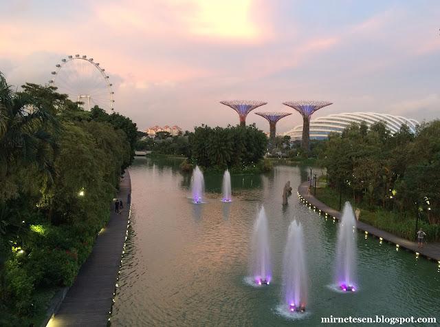 Сингапур - Сады у залива