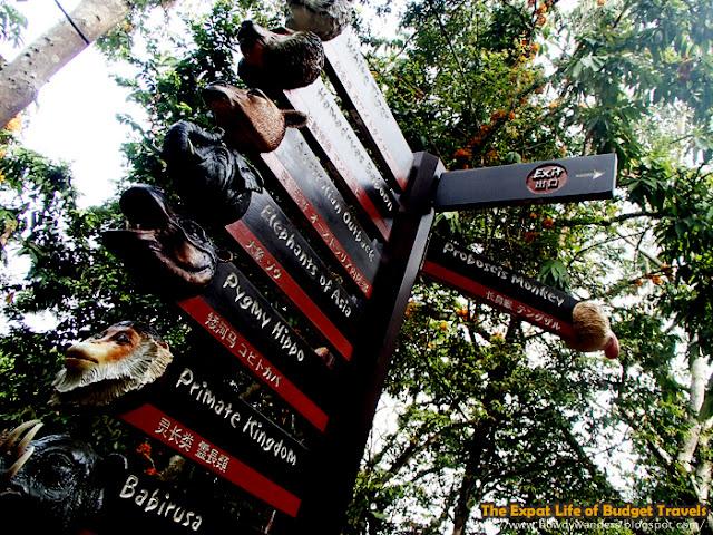 Singapore Zoo - The World's Best Rainforest Zoo