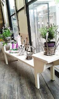 Kerti bútorok és kaspók itt: http://shop.dekoresmentha.hu/