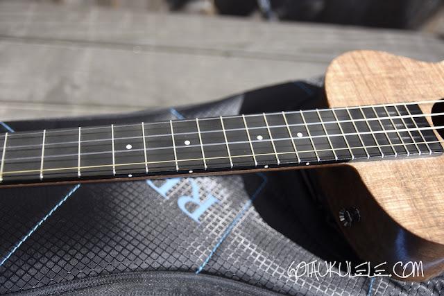 Blackbird Farallon Tenor Ukulele fingerboard