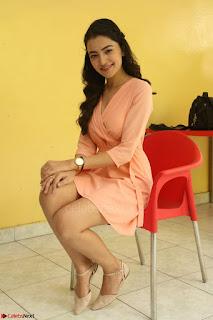 Rukshar Mir in a Peachy Deep Neck Short Dress 018.JPG