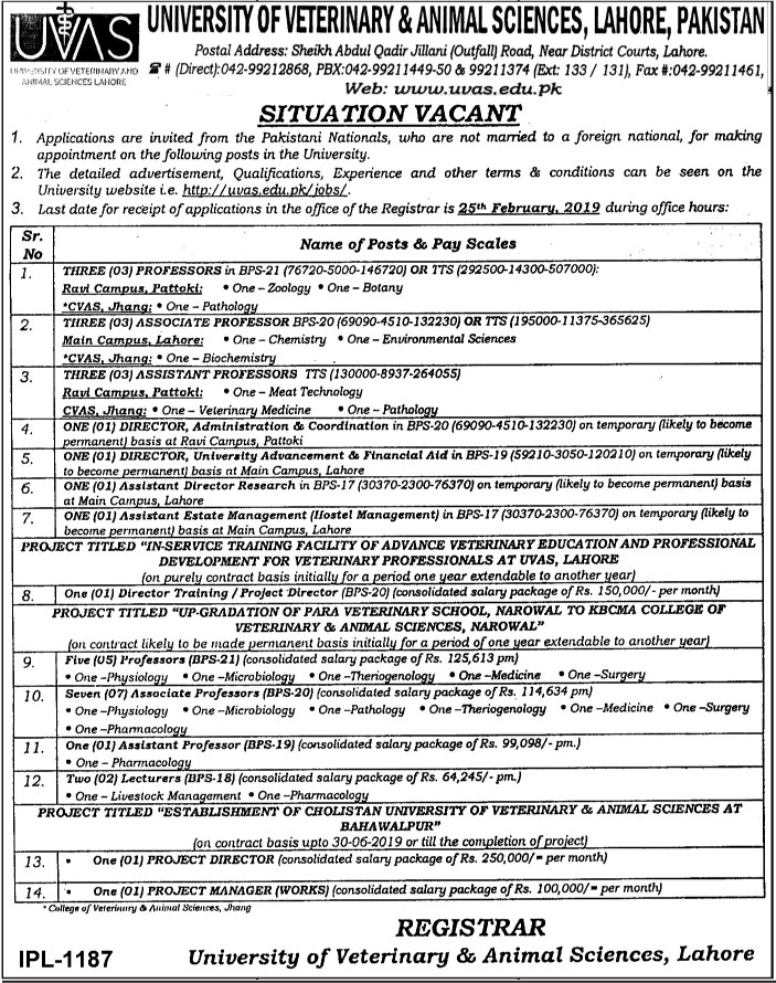 University Of Veterinary And Animal Sciences (UVAS) Announced Jobs in Lahore