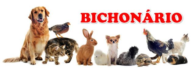 Lista de Animais por Ordem Alfabética para montar Bichonário