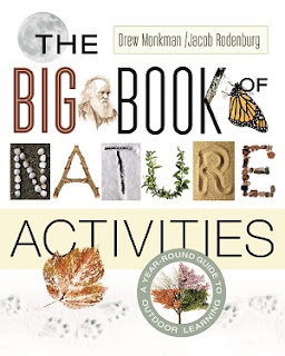 The Big Book of Nature Activities cover
