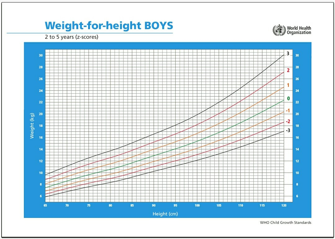 10 Cara Menghitung Berat Badan Ideal Dewasa dan Anak-anak