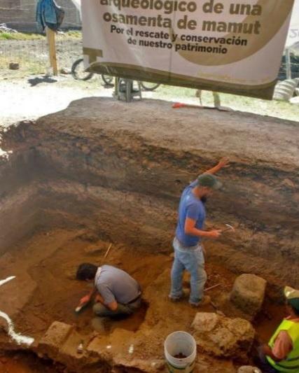 Arqueólogos, descubrimiento
