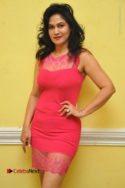 Telugu Actress Vijaya Murthy Stills in Red Short Dress at Www.Meena Bazaar Movie Opening  0001.JPG