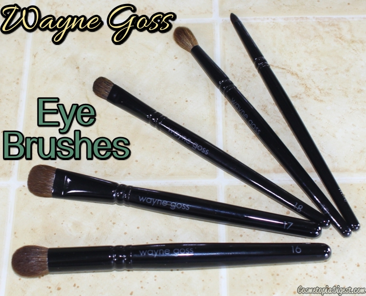 Review of all the Wayne Goss makeup brushes and how I use them.