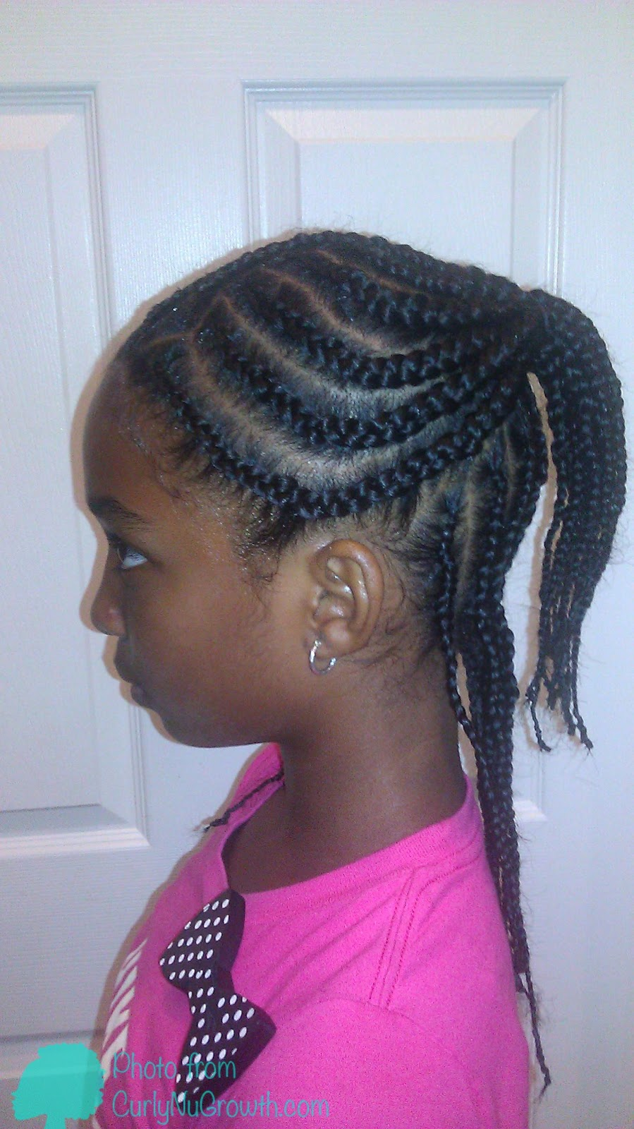 Curlynugrowth It Begins Hair Braided Hairstyle Two