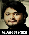 http://www.humaliwalayazadar.com/2016/06/muhammad-adeel-raza-nohay-2014-to-2017_5.html