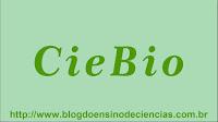 Questões de Biologia sobre Genética Molecular e Síntese Proteica