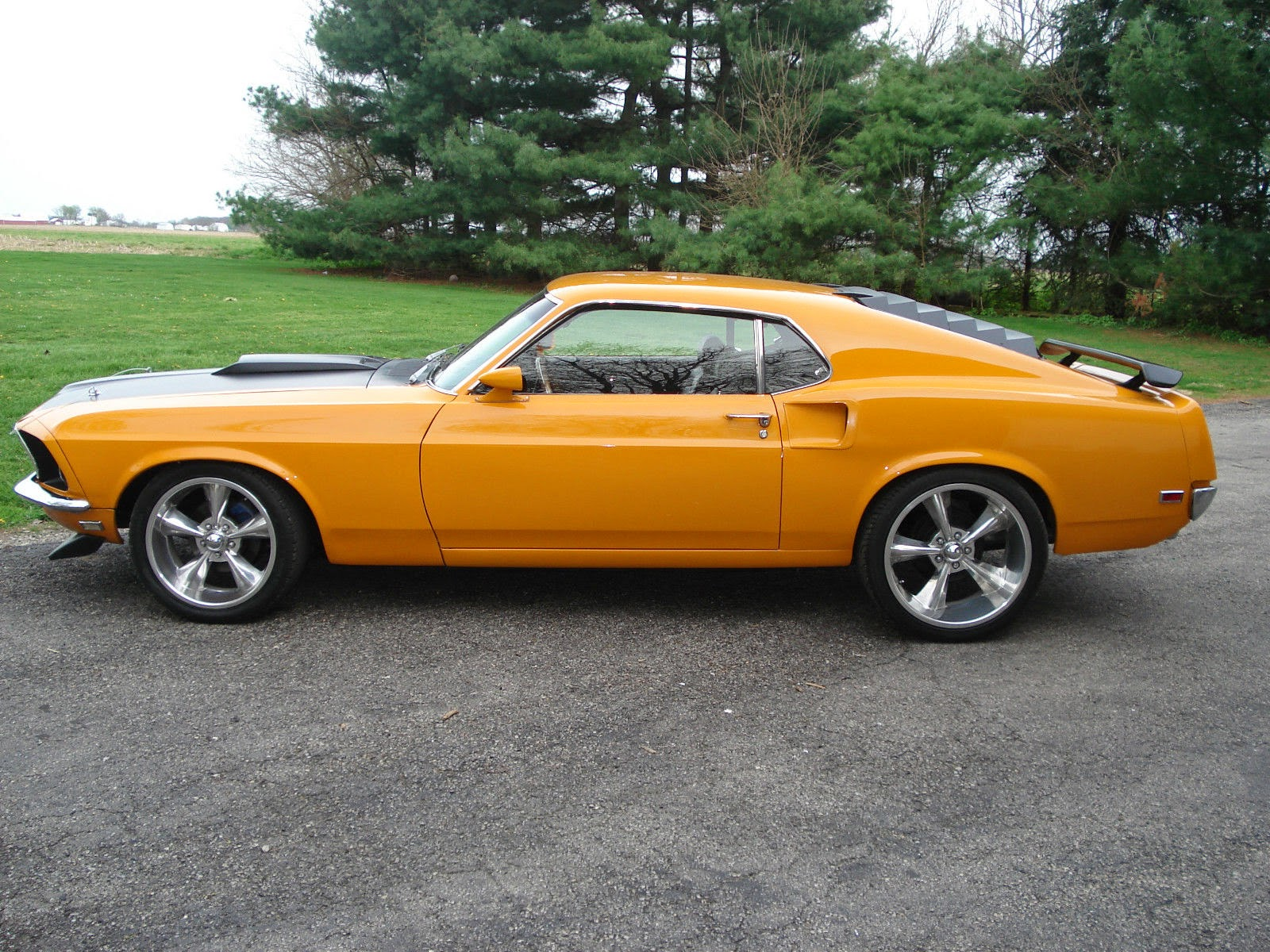 1969 ford mustang fastback 351 cobra jet grabber orange for sale american muscle cars. Black Bedroom Furniture Sets. Home Design Ideas