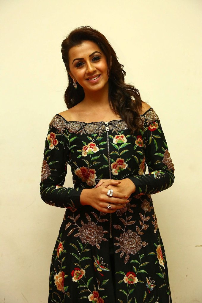Nikki Galrani At Hara Hara Mahadevaki Movie Audio Launch Stills