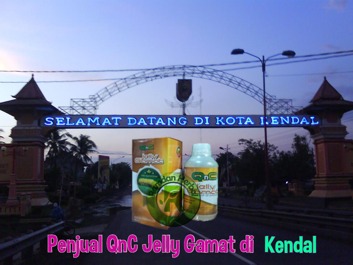 Penjual QnC Jelly Gamat di Kendal