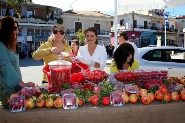 Ευχαριστίες του Συλλόγου ΒΙΤΟΡΙΖΑ για την 6η Γιορτή Ροδιού στην Ερμιόνη