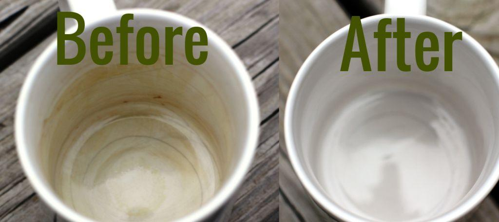Image result for toothpaste cleaning on coffee mugs