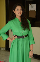 Geethanjali in Green Dress at Mixture Potlam Movie Pressmeet March 2017 053.JPG