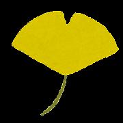 紅葉のイラスト「黄色いイチョウ」