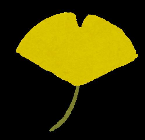 紅葉のイラスト黄色いイチョウ かわいいフリー素材集 いらすとや