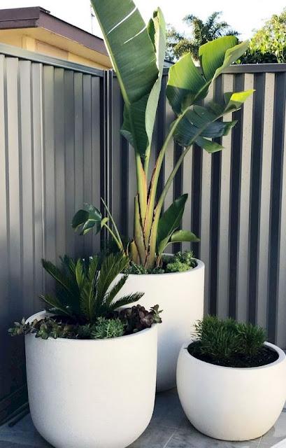 05. Desain taman minimalis dengan pot