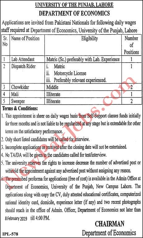 University of the Punjab Lahore latest jobs today 2019