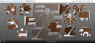 https://tinyurl.com/skeletonpuzzles