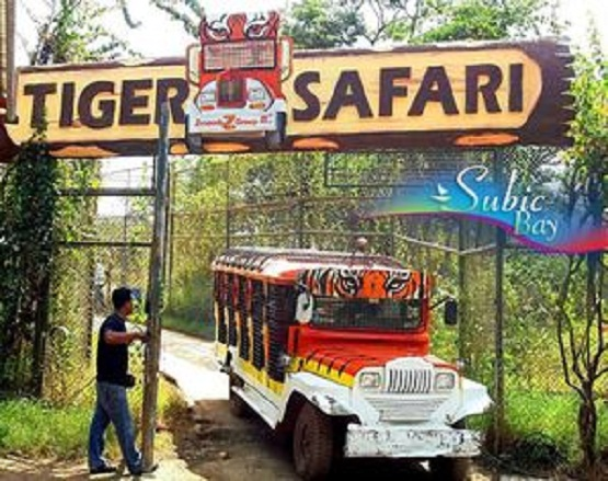 Zoobic Safari in Subic Philippines