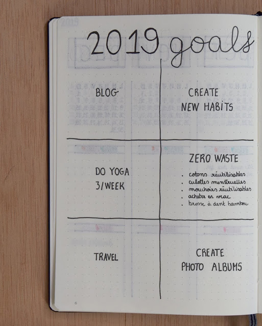 the green frog organisation 2019 bullet journal minimaliste page 2019 goals objectifs résolutions projets