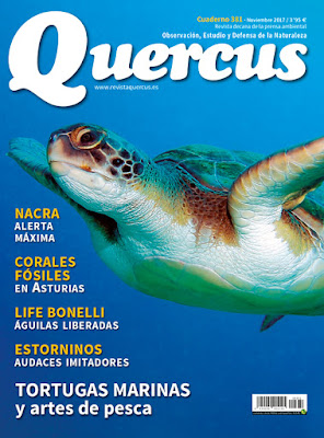 Revista Quercus 381