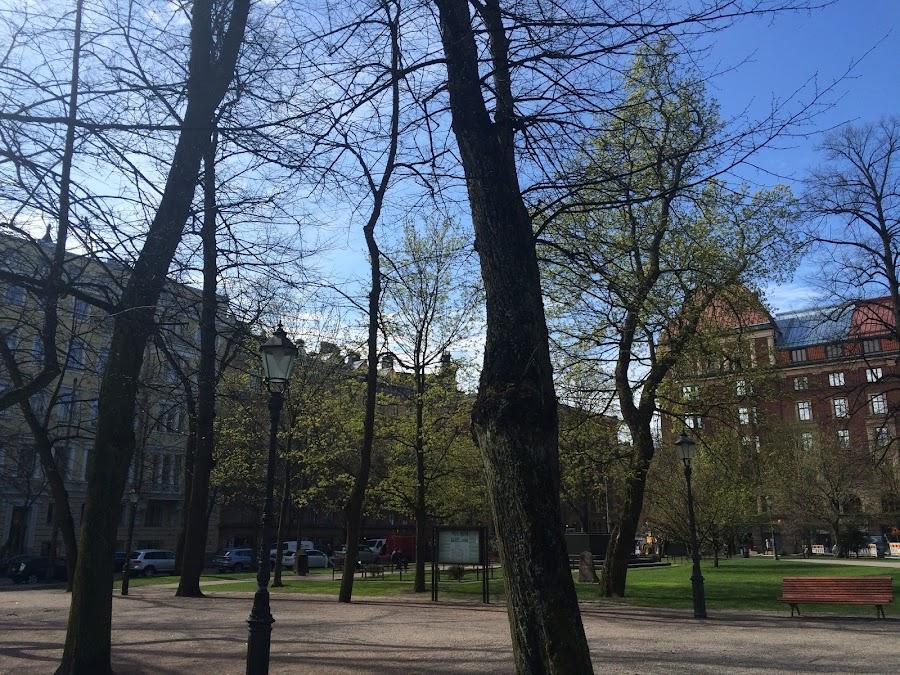 古い教会公園(Vanha kirkkopuisto)
